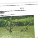 La Comisión Europea deja de lado la gestión pública del agua