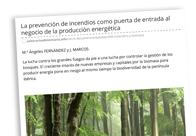 La prevención de incendios como puerta de entrada al negocio de la producción energética