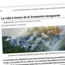 La vida a lomos de la Amazonia menguante
